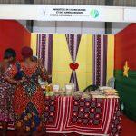 Sialo 2019// La délégation burkinabé quitte Lomé satisfaite.